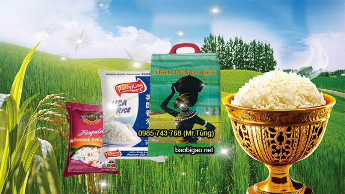 mẫu bao đựng gạo
